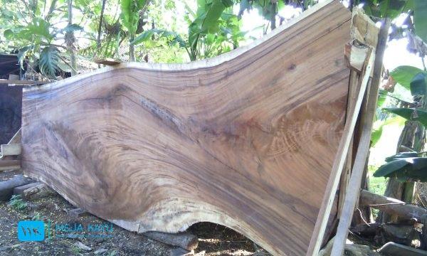 kayu suar